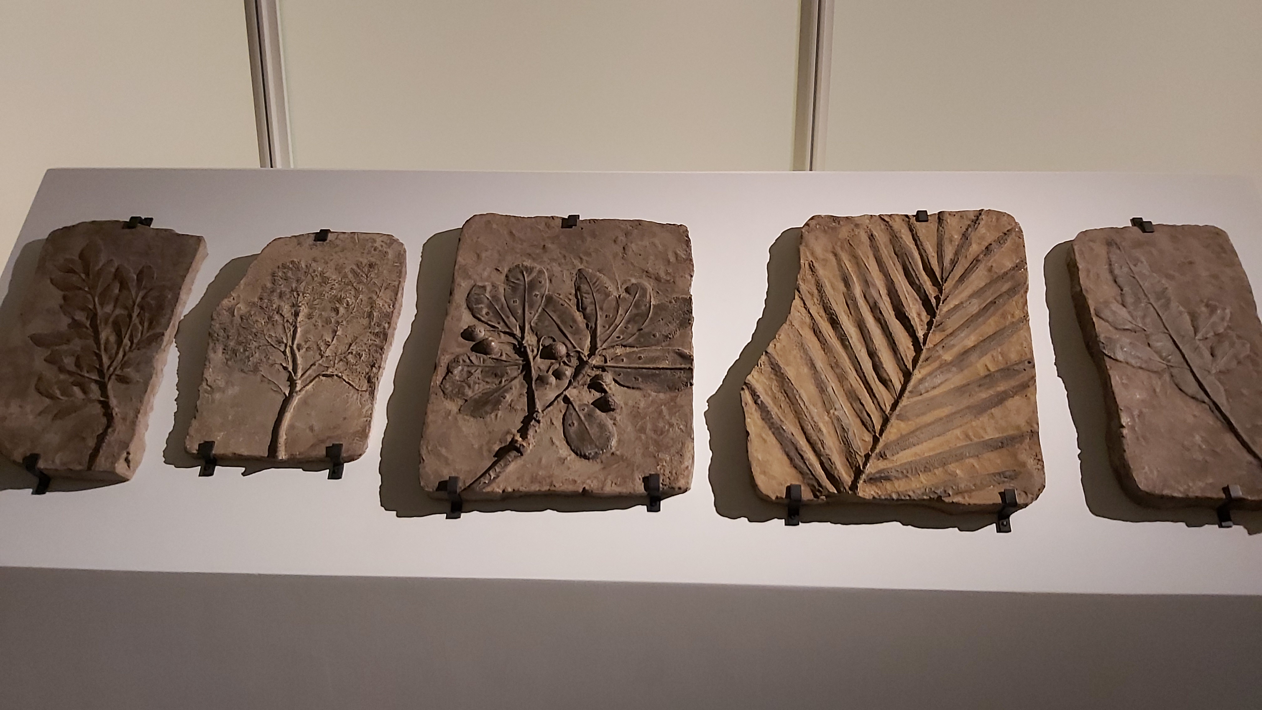 涂維政《遺跡化石》系列展出作品細節